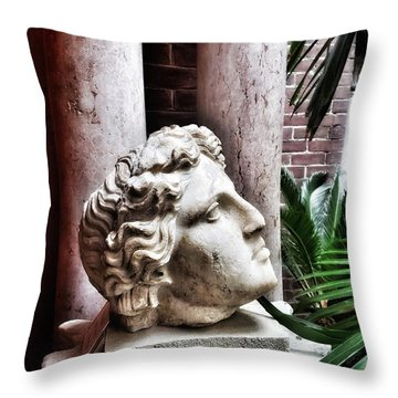 Antiquity Throw Pillow