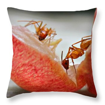 Ants Throw Pillow
