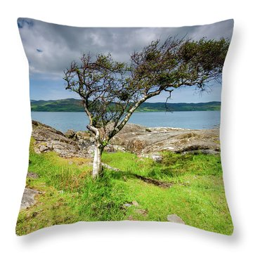 Any Way The Wind Blows Throw Pillow