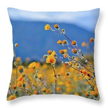 Anza Borrego Wild Desert Sunflowers Throw Pillow