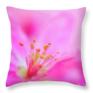 Apple Blossom 1 Throw Pillow