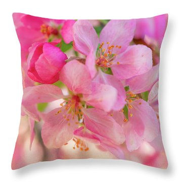 Apple Blossom 12 Throw Pillow