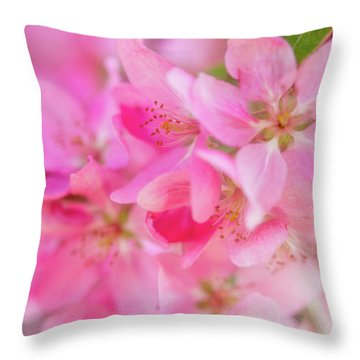 Apple Blossom 5 Throw Pillow