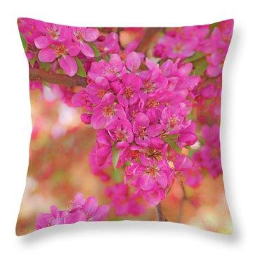 Apple Blossoms A Throw Pillow
