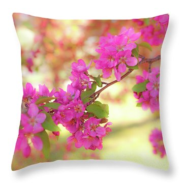 Apple Blossoms B Throw Pillow