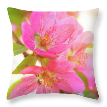 Apple Blossoms Warm Glow Throw Pillow