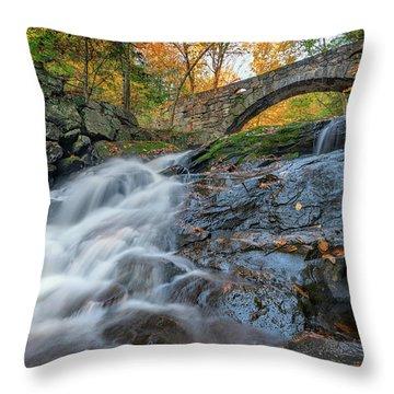 Throw Pillow featuring the photograph Arch Bridge At Vaughan Woods by Rick Berk