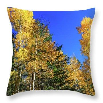 Arizona Aspens In Fall 1 Throw Pillow