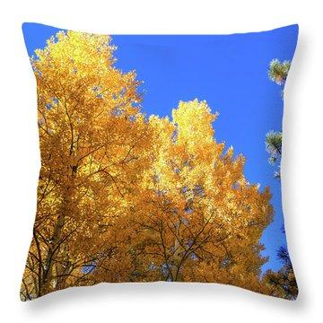 Arizona Aspens In Fall 2 Throw Pillow