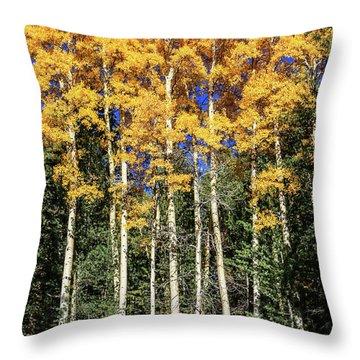 Arizona Aspens In Fall 3 Throw Pillow