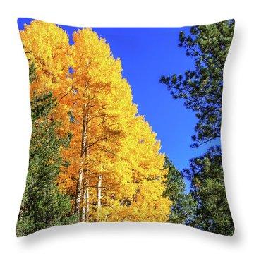 Arizona Aspens In Fall 4 Throw Pillow