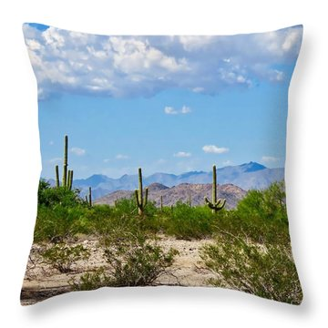 Arizona Desert Hidden Valley Throw Pillow
