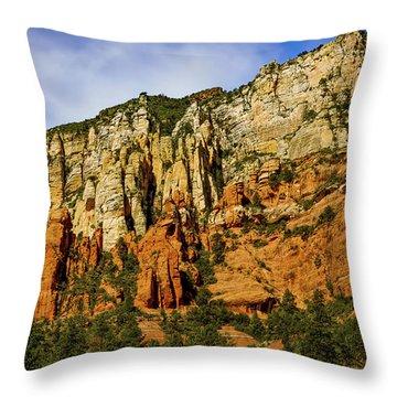 Throw Pillow featuring the photograph Arizona Morning by Jon Burch Photography