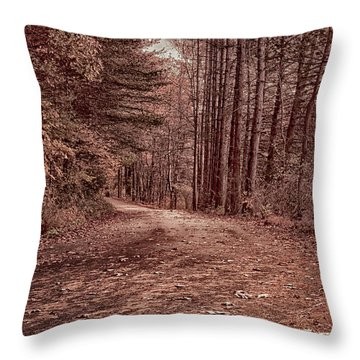 Around The Corner Throw Pillow