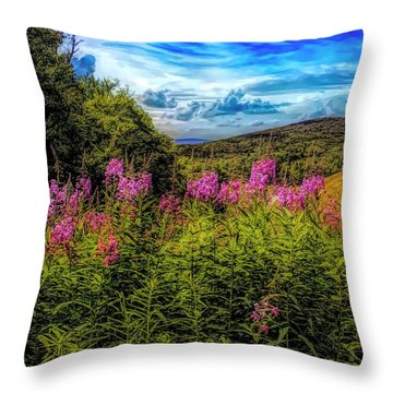 Art Photo Of Vermont Rolling Hills With Pink Flowers In The Fore Throw Pillow
