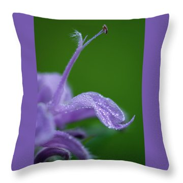 Throw Pillow featuring the photograph Artistry In Nature by Dale Kincaid