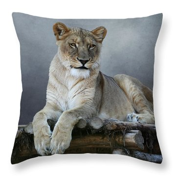 Throw Pillow featuring the photograph Happy Lioness by Debi Dalio