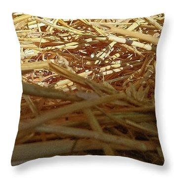 Golden Straw Bed Throw Pillow