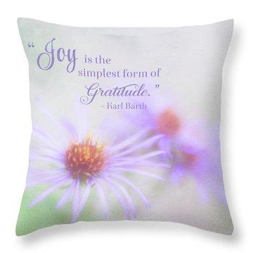 Joy And Gratitude For All Seasons Throw Pillow