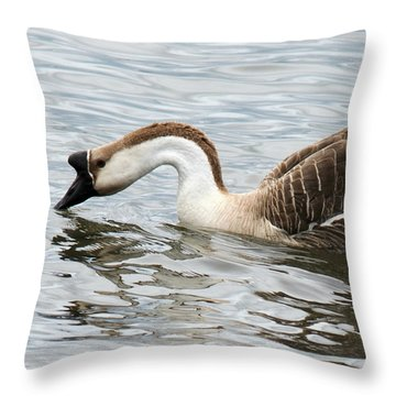 Z Posed African Goose Throw Pillow