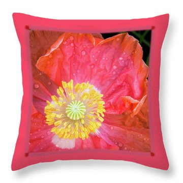 Poppy Closeup Throw Pillow