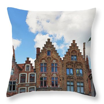 Throw Pillow featuring the photograph As Eyck Can by Nathan Bush