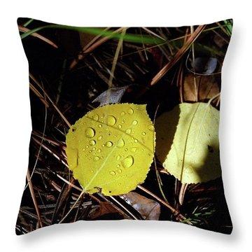 Aspen Dew Throw Pillow