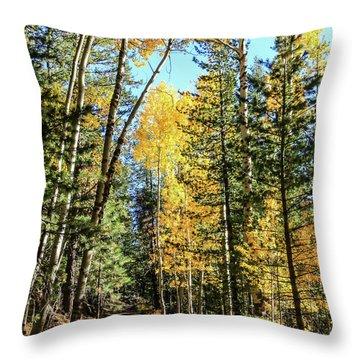 Aspen Trail Throw Pillow