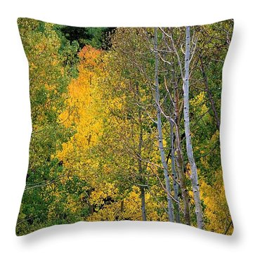 Aspens In Yellow Throw Pillow
