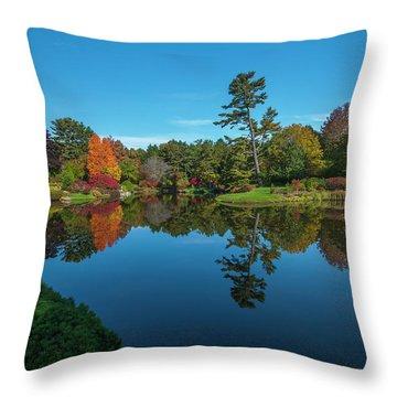 Asticou Reflection Throw Pillow
