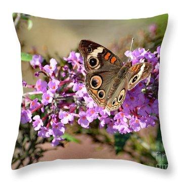 Astonishing Common Buckeye  Throw Pillow