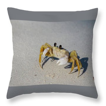 Atlantic Ghost Crab Throw Pillow