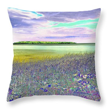 Au Train Island Greened Over Throw Pillow