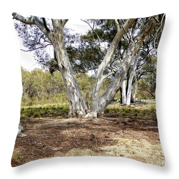 Australian Bush Scene Throw Pillow