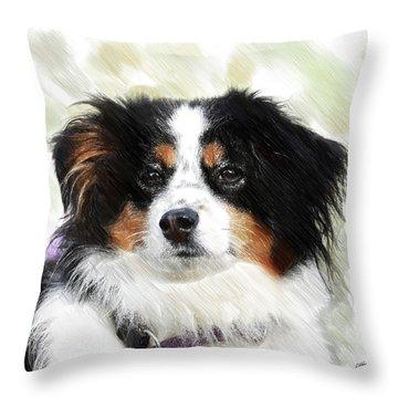 Australian Shepherd - Dwp3237735 Throw Pillow