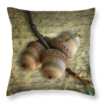 Throw Pillow featuring the mixed media Autumn Acorns On Vintage Postcard Digital Art by Debi Dalio