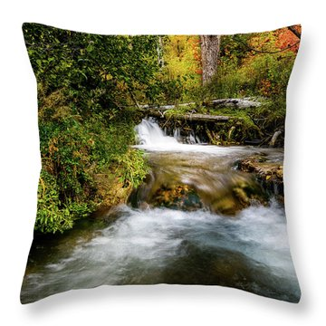 Throw Pillow featuring the photograph Autumn Along The Provo Deer Creek by TL Mair