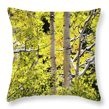 Autumn Aspens 3 Throw Pillow