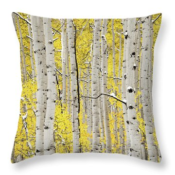 Autumn Aspens 6 Throw Pillow