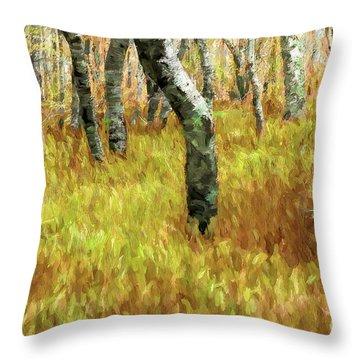 Autumn At Craggy Gardens Ap Throw Pillow