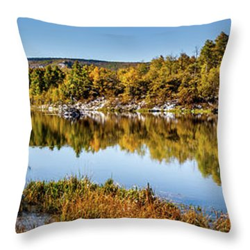 Throw Pillow featuring the photograph Autumn At Ivie Pond Panoramic by TL Mair