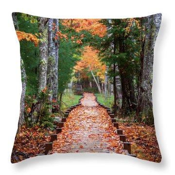 Autumn At Jesup Path Throw Pillow