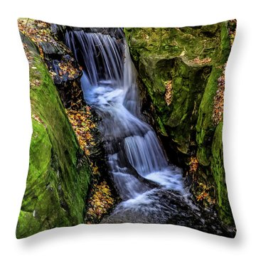 Autumn At Pewits Nest Throw Pillow