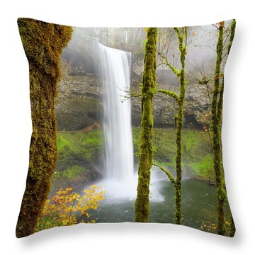 Autumn At Silver Falls State Park Throw Pillow
