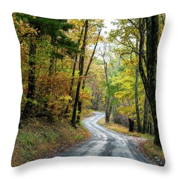 Throw Pillow featuring the photograph Autumn Begins  by Lara Ellis