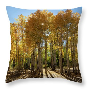 Throw Pillow featuring the digital art Autumn Blaze Outside Of Crested Butte, Colorado.  by OLena Art Brand