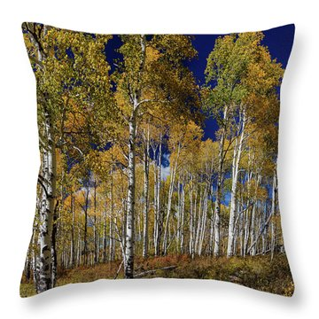 Throw Pillow featuring the photograph Autumn Blue Skies by James BO Insogna