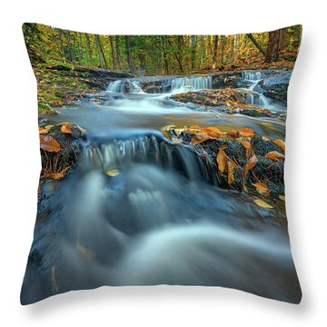 Throw Pillow featuring the photograph Autumn Cascade In Vaughan Woods by Rick Berk