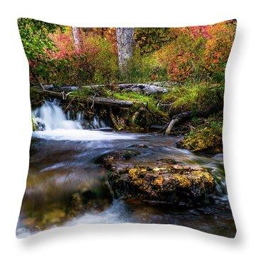 Throw Pillow featuring the photograph Autumn Cascades by TL Mair