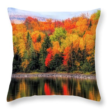 Throw Pillow featuring the photograph Autumn Colors Reflection by Dan Sproul